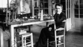Double Nobel-winner Marie Curie tops 'Women who Changed the World' list, here's the full list