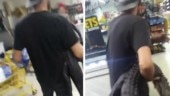 Watch: Florida man goes on a beer run, with an alligator in hand