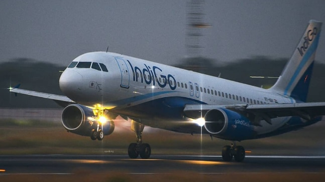 Indigo airlines is offering a lucrative deal on domestic flights Photo: Instagram/indigo.6e