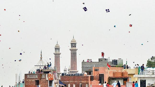 Kite-flying is popular in old Delhi close to I-Day and every year birds become victims of sharp kite thread. (Photo: Kasif)