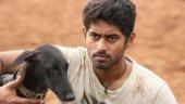 Pariyerum Perumal Review: Mari Selvaraj film is disturbing caste drama