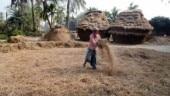 In West Bengal, BJP plans to popularise Balaram worship to woo farmers