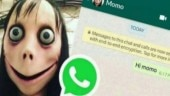 Momo Challenge: CBSE alerts students for online suicidal game in its public advisory