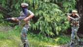 250 terrorists trying to sneak into India from PoK: Army
