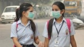 Delhi air pollution: Why stubble burning continues despite penalty