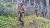 163 militants killed in Kashmir this year