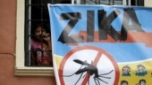 Zika virus cases go up to 55 in Jaipur