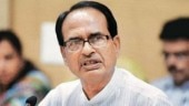 Madhya Pradesh Chief Minister Shivraj Singh Chouhan said that the BJP have prepared a roadmap for the development of the state as well as the welfare of each section of the society.