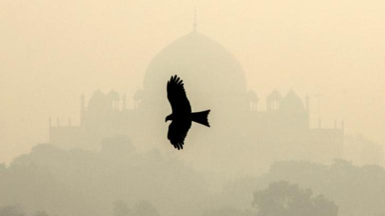Wind direction brings smoke from stubble burning in neighbouring states towards Delhi