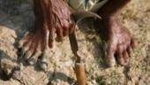 Maharashtra: Debt-ridden farmer kills self by lighting own pyre
