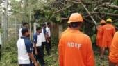 Cyclone Gaja: Death toll increases to 36