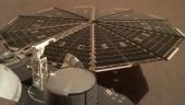 NASA releases the latest image of InSight capturing a solar panel. (Photo courtesy: NASA/JPL-Caltech)