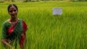 Godrej Agrovet – Empowering farmers for a better livelihood