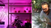 Left: A little 'Cyborg Garden' by Sareen; Right: Harpreet taking a picture of a plant (Images: Harpreet Sareen)