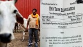 'If a Muslim kills a cow in front of Hindus, is it an offence?' IP university law exam asks question on religion