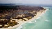 Magnitude 6 quake jolts Nicobar Islands region