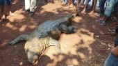 Chhattisgarh village holds funeral for beloved crocodile, 500 people attend