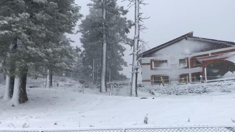 In Photos: Kashmir receives first snowfall of 2019 - India News