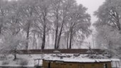 Normal life likely to be disrupted as temperatures remain below freezing point in Kashmir Valley
