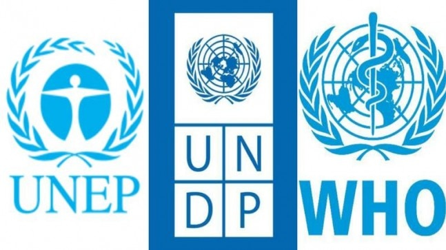 14 important United Nations agencies and their roles