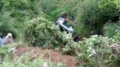 Himachal Pradesh: 22 people injured as bus falls in gorge