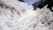 One rescued in Jammu and Kashmir avalanche