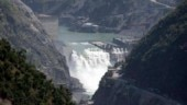 Only 5 per cent water from eastern rivers flows into Pakistan: Ex-chairman of water commission