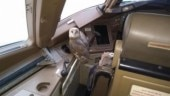 Owl perches itself in Jet Airways flight cockpit, Twitter says good omen for cash-strapped airline