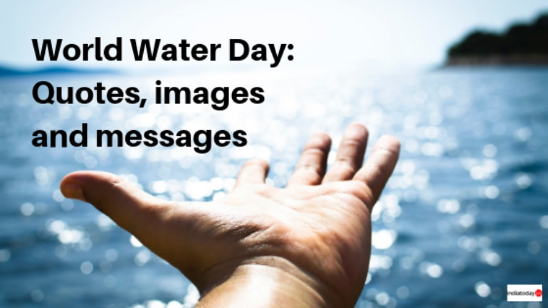 World Water Day: Quotes, messages and images   Information News