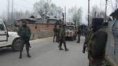 3 encounters in 24 hours: 2 Jaish terrorists, 4 militants killed in Kashmir