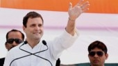 Want to start a new business? Here is Rahul Gandhi's 3-fold plan for young entrepreneurs