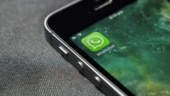 WhatsApp for iOS receives update, adds new emoji categories bar and ability to add contact