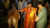 Cow urine cured my breast cancer: Sadhvi Pragya