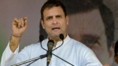 Rahul Gandhi's assets grew 64% in 5 years