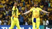 IPL 2019: Dhoni, Harbhajan, du Plessis star as CSK overcome KXIP challenge at Chepauk