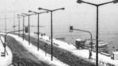 New device can produce electricity from falling snow