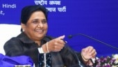 My statues were built in public interest: Mayawati's justification in Supreme Court