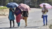 Heatwave grips many states, Ramagundam in Telangana sizzles at 47.2 degree Celsius