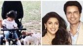 Asin took to Instagram to share an adorable video of her daughter Arin playing with goats.