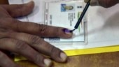How to vote in Lok Sabha elections, what you need to carry