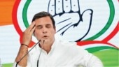 Massive setback for Congress in Lok Sabha elections: What's next for Rahul Gandhi?