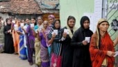 Lok Sabha Election Phase 7 polls: 46 per cent polling in Uttar Pradesh till 3 pm
