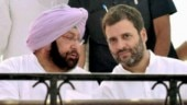 Proud of who you have become over the years: Amarinder to Rahul