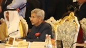Pakistan's large-scale terrorism industry prevents it from behaving like normal neighbour: S Jaishankar