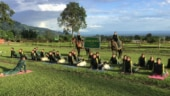 International Yoga Day: Army dogs beat police troops at asanas in Arunachal Pradesh. Pics and videos