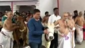 Hyderabad priests worship cows to prevent child rapes in India