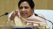 Called Akhilesh Yadav on election counting day, he did not answer: Mayawati launches all-out attack on SP
