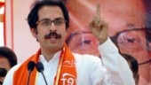 Shiv Sena attacks BJP, says pep talk and advertisements will not generate jobs