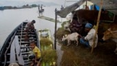Assam floods: 26 lakh people affected as heavy rains cause deluge, Tripura, Meghalaya also affected