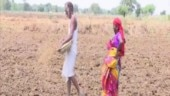 Chhattisgarh: 23% rain deficit a cause of concern for environmentalists, farmers